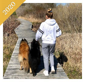 Same preteen is now a teenager walking same dog on boardwalk from 2020