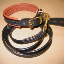 Padded Buckle Collar and Leash Set