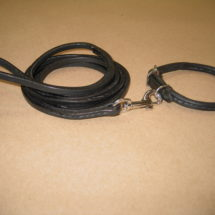 Small Breed Rolled Buckle Collar & Leash Set