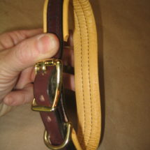 Padded Buckle Collar