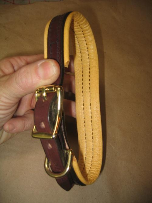 Padded Buckle Collar