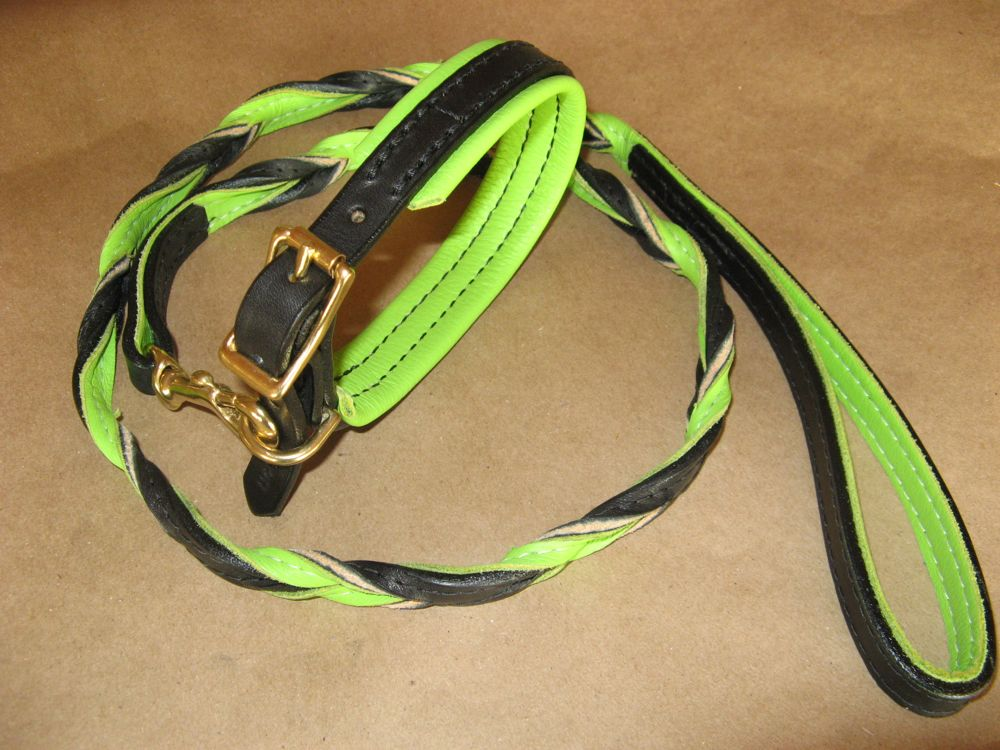 Leashes ~ Braided Colors